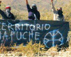 Mapuches patagonia protesta